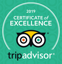 TripAdvisor 2019 - Excellence.PNG